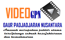 Video Gpn