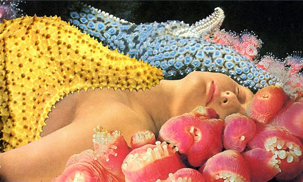 Collage by Javier Piñón