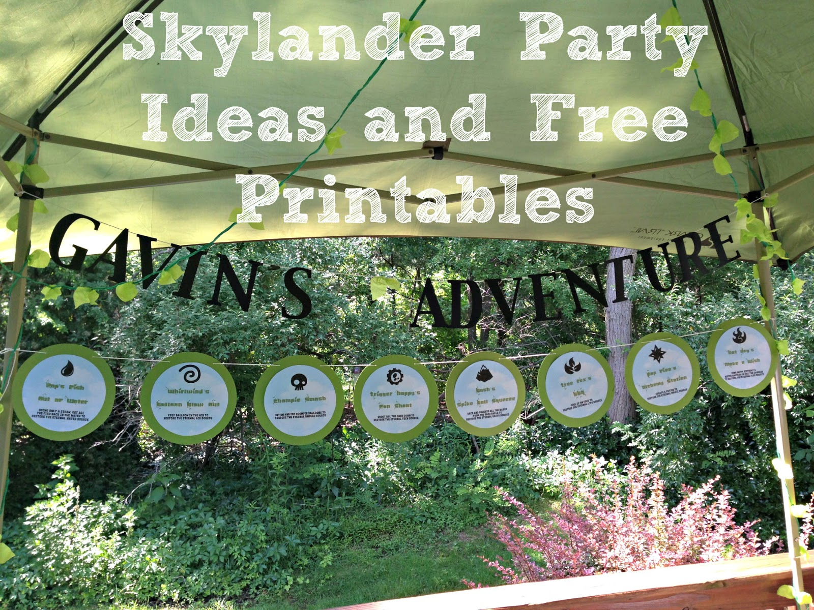 Some Of The Best Things In Life Are Mistakes Skylander Birthday Party With Free Printables