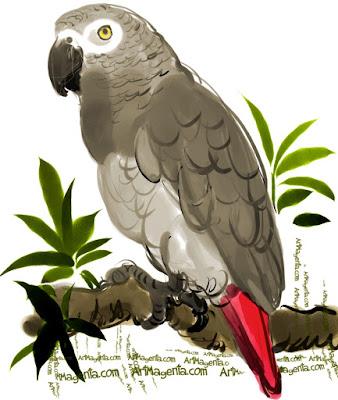 Grå Jako är en fågel sketch av Artmagenta
