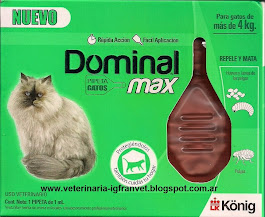 Pipeta Dominal Max para gatos mayores de 4 kg