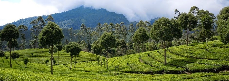 Daftar Tempat Wisata Yang Asik Dikunjungi Di Bandung Utara