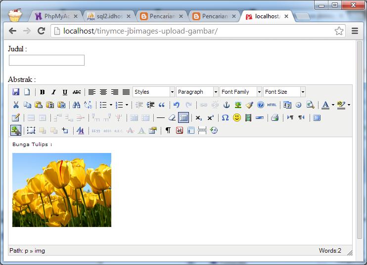Plugin TinyMCE Upload Image dengan JBImages, WYSIWYG Editor yang Mampu Mengupload Gambar
