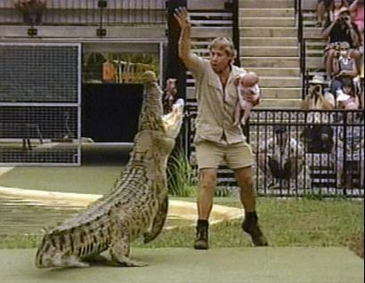 crocodile,chordata,Reptilia,Crocodylomorpha,Crocodylia,Crocodyloid,