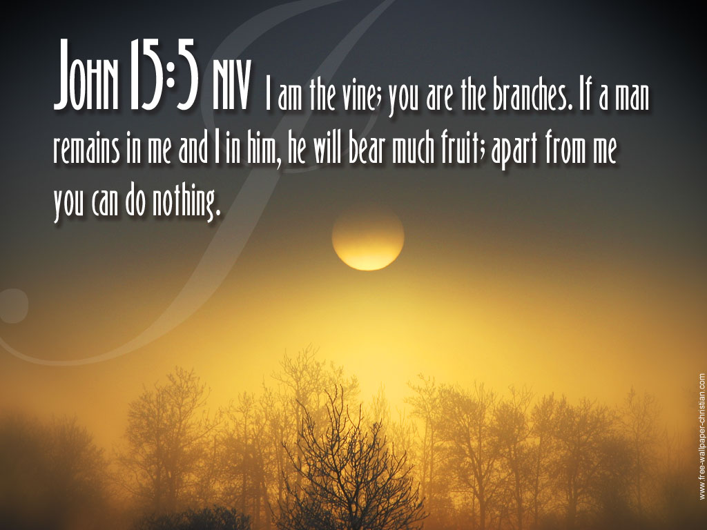 Images All Photos Gallery Bible Quotes God Wallpaper