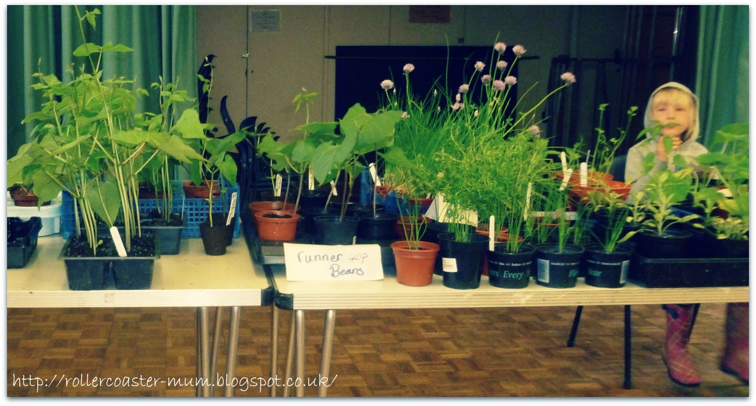 Plant Sale at the Village Hall