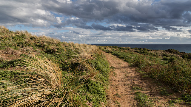 walking track on cape woolamai
