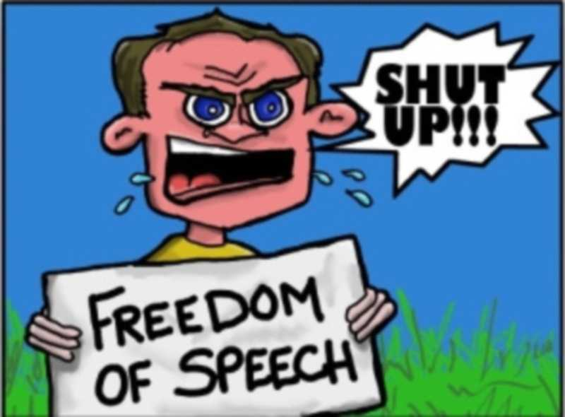 what freedom of speech means t America is a symbol of freedom all over the world, enjoying as we do freedom of speech, freedom of religion, and freedom of the press  the true meaning of freedom we may not have free will .