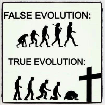 human evolution myth or fact essay Top ten myths about evolution (and one extra) it had a modern human skull but an ancient apelike jaw not on the fact that many religions oppose abortion.