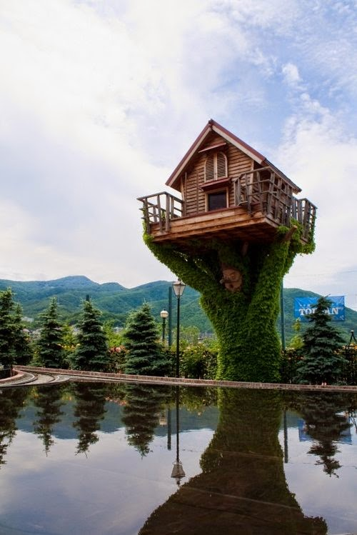 34-TreeHouse-over-the-Water-Small-Homes-Offices-&-Other-www-designstack-co