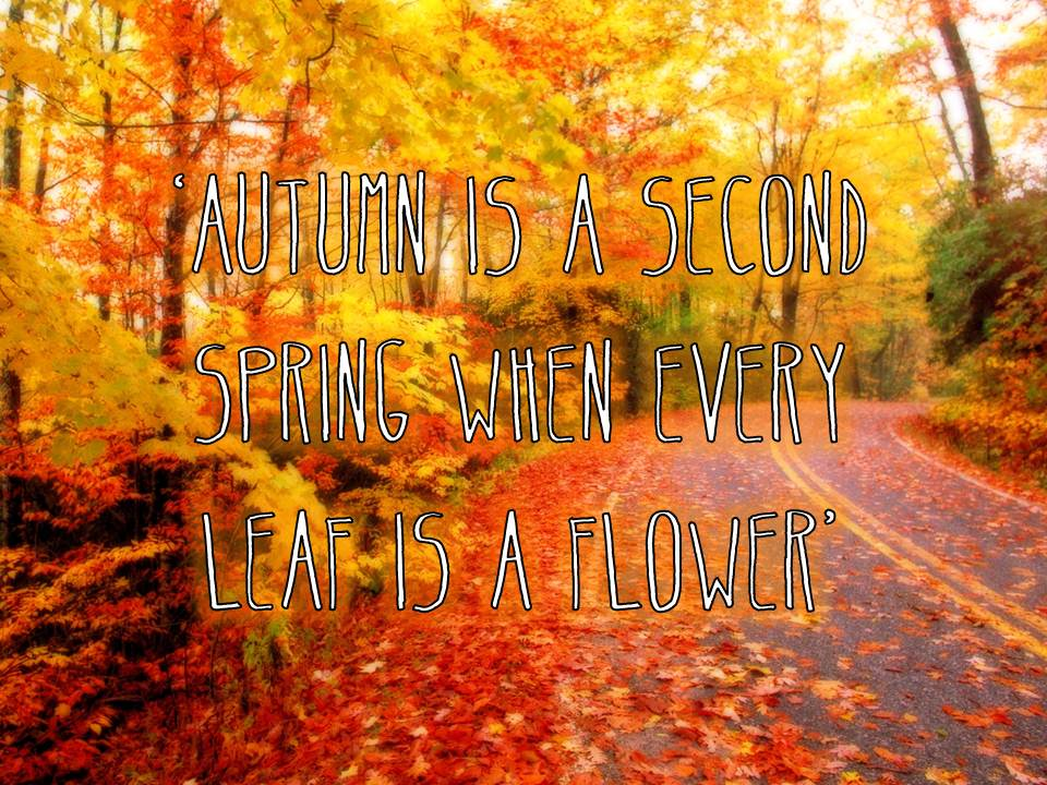 About autumn quotes and sayings quotesgram for Getting ready for fall