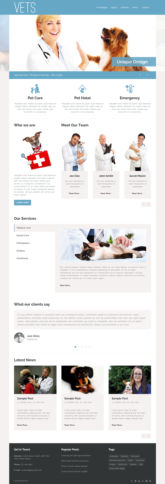 Premium Pet care website theme