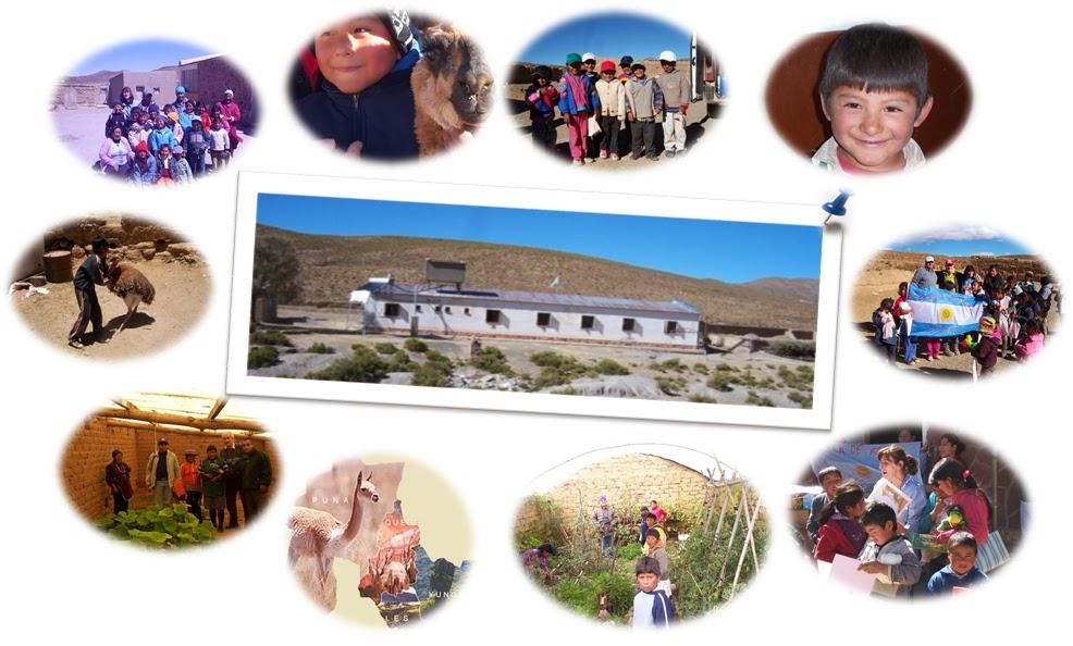 Construcci n de un invernadero andino para huerta en la for Materiales para la construccion de un vivero
