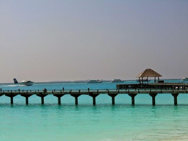 Maldivi-Cvet-Vodi