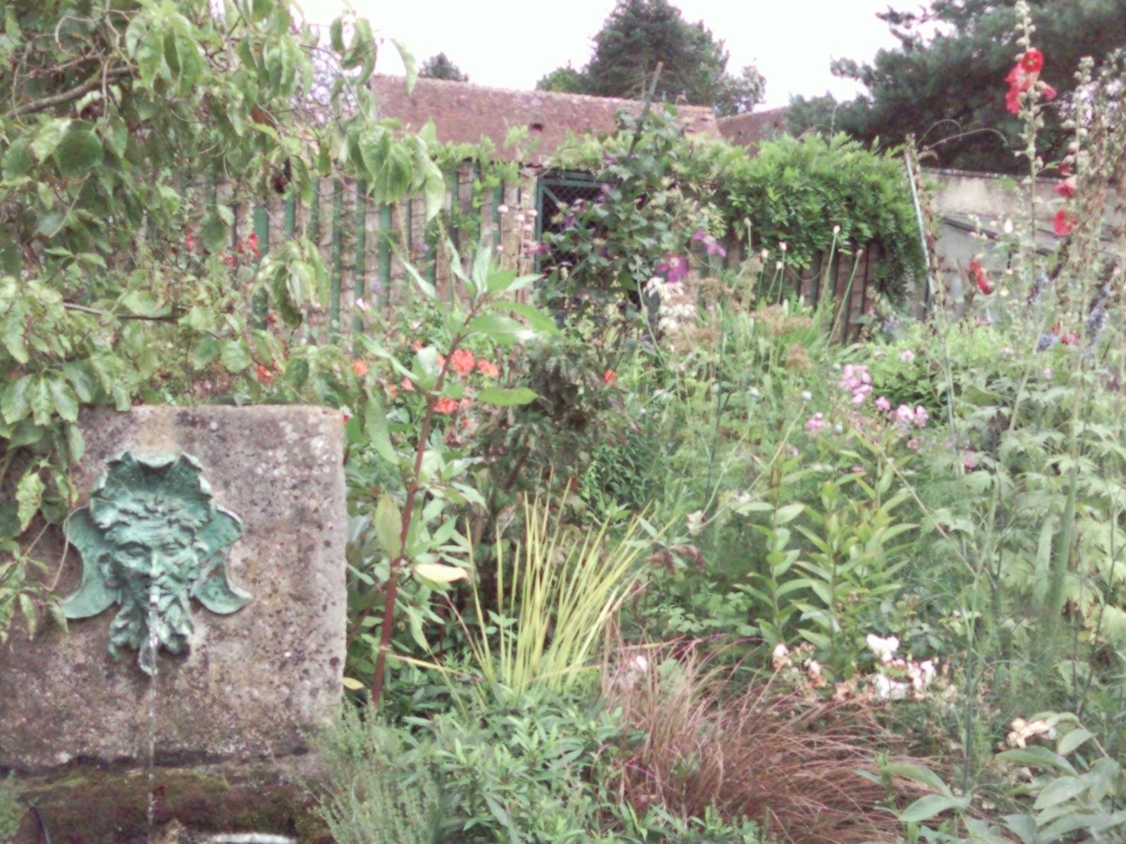 I v cactus de goutti re jardin de la petite rochelle for Entretien jardin la rochelle