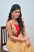 yamini bhaskar latest glam pics-thumbnail-8