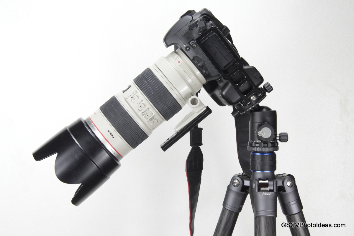 Canon EOS 7D w/ Grip + EF 70-200 2.8 L IS USM clamped on Sunwayfoto DB-36DDH by L bracket
