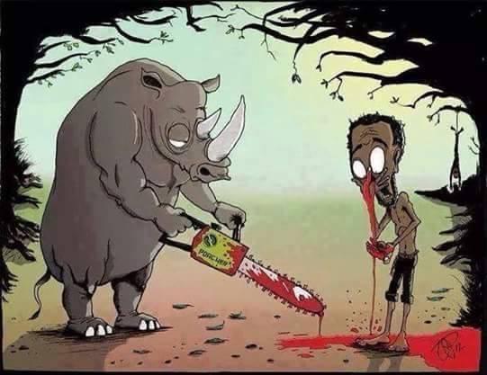 Nariz de Rinoceronte