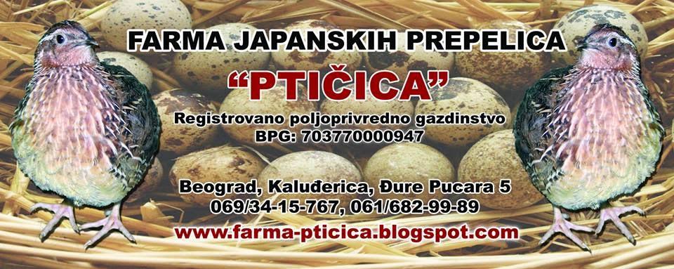 Farma Japanskih prepelica Ptičica