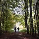 Kisah Suami Istri yang Tersesat di Hutan Belantara