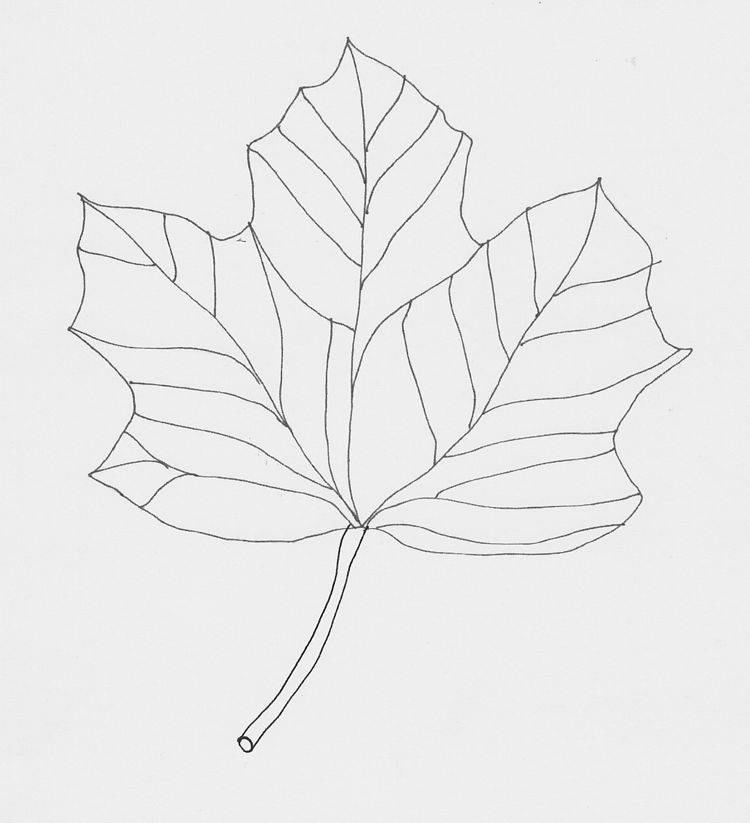 Line Drawing Leaf : Art is joy