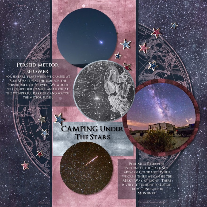 Crafty Colonel Donna Nuce, For Layout A Day 215, Club Scrap Constellation,