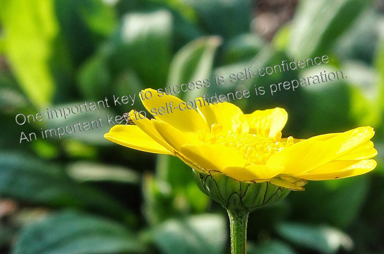 Beautiful Moment Quotes On Life By Shiba Shankar Pattayat