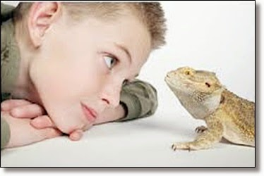 Picture of a boy with iguana