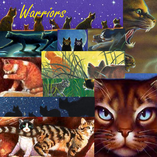 my top collection warriors cats wallpaper