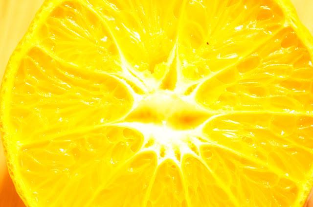 orange royalty free photo
