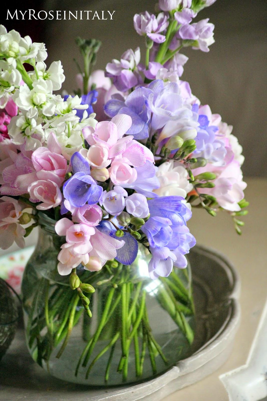 My roseinitaly delicati fiori di primavera for Fiori di primavera