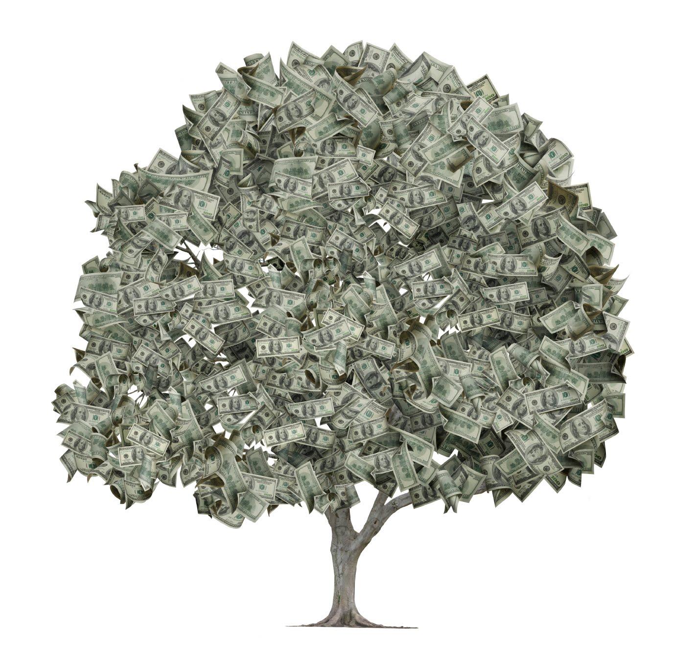 http://4.bp.blogspot.com/-VrKGuN_pMOY/TjPql78UI9I/AAAAAAAAATg/rcI3edZvYr8/s1600/iStock_money+tree.jpg