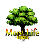 More Life Productions-California