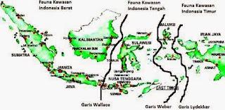 Penyebaran Fauna Indonesia