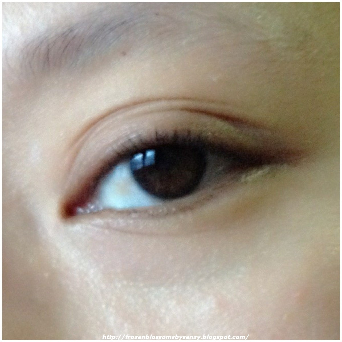 Frozen Blossoms Review Thefaceshop Face It Extreme Mascara Ex Dual