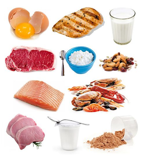 5 Reasons To Eat More Protein