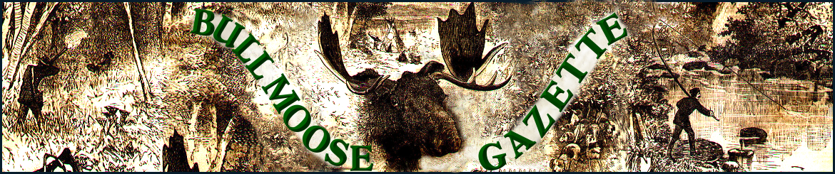 BULL MOOSE GAZETTE