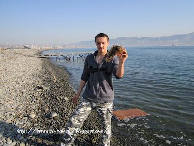 скорпена, морской ерш, ловля морского ерша