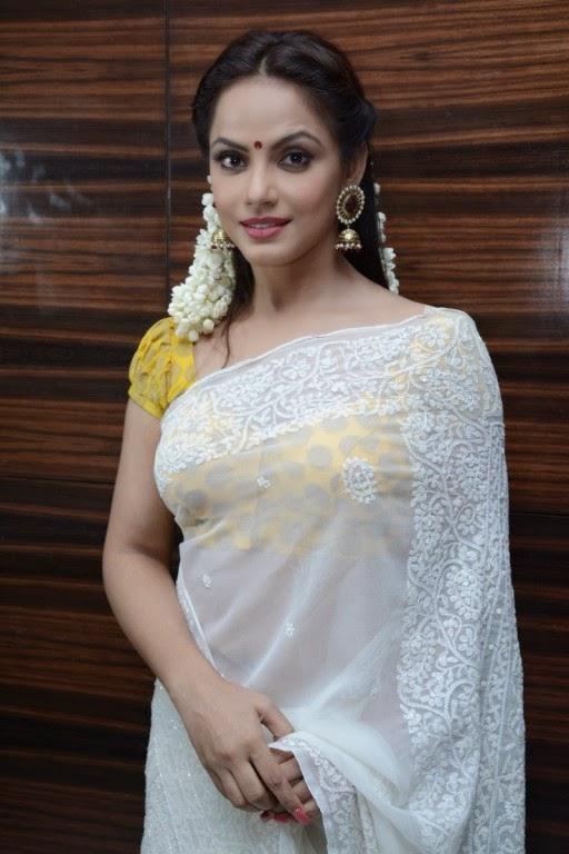 Actress Neetu Chandra In Saree Spicy Pics