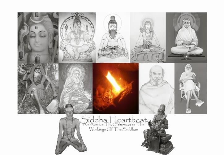 Siddha Heartbeat