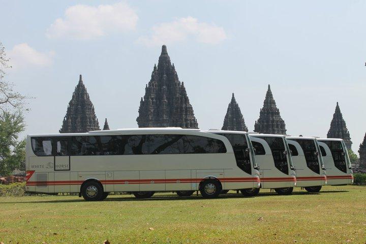 Sewa Bus Pariwisata Jogja - PO White Horse Jogja