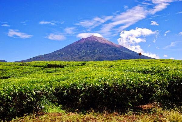 Kerinci Mountain National Park