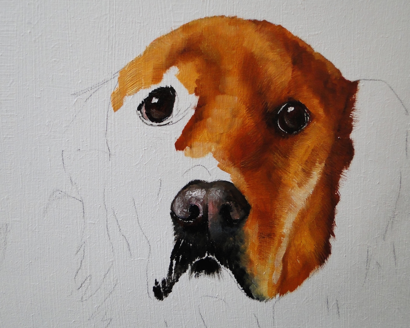 oil painting of a golden retriever, a pet portrait by karen