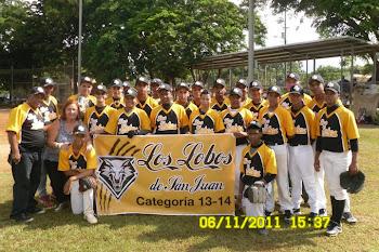 LOS LOBOS DE SAN JUAN