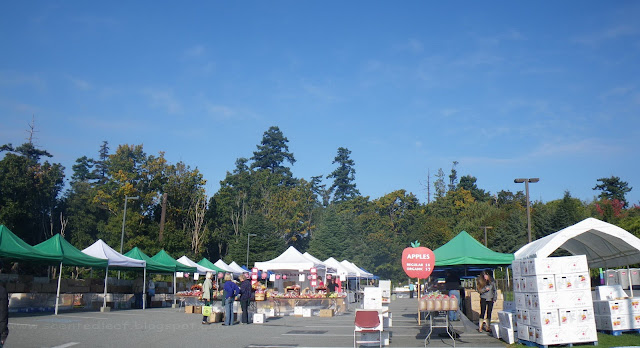 UBC Apple Festival 2011 - 41000 pounds of apples (75 varieties) for sale