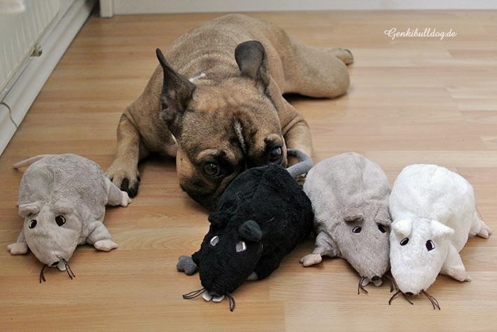 IKEA Ratten