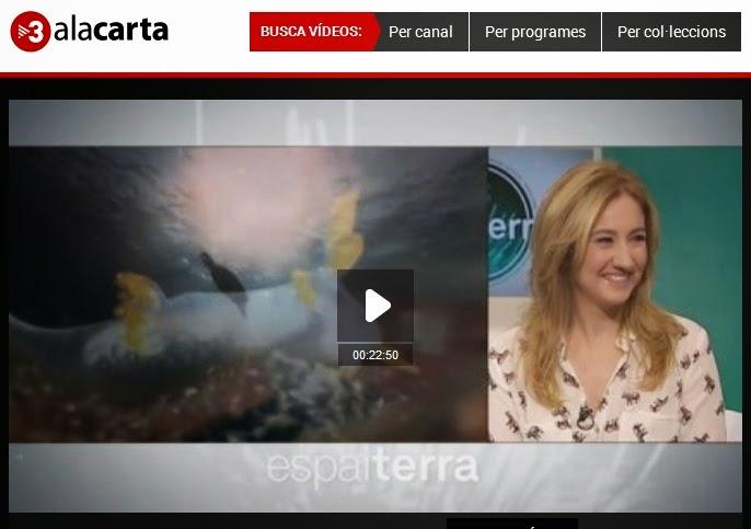 http://www.ccma.cat/tv3/alacarta/Espai-Terra/Espai-Terra-Dimecres-3-de-desembre/video/5380281/#