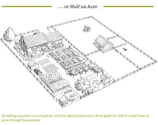 Backyard Homestead Layouts http://mygaliciangarden.blogspot.com/2012/06/garden-design-continued.html