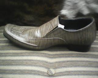 sepatu aigner yang dilihat dari sisi kiri