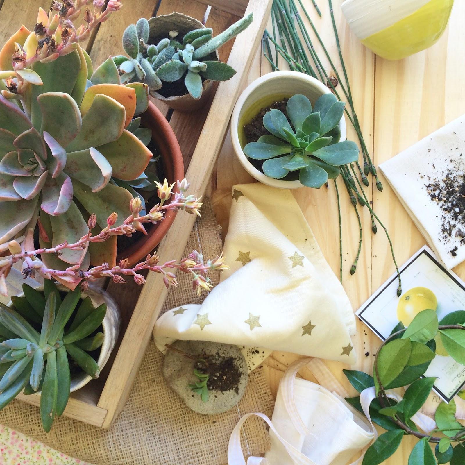 Mesas botánicas y felices